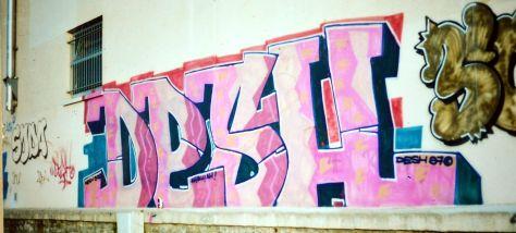 graffiti_desh_besancon (9)
