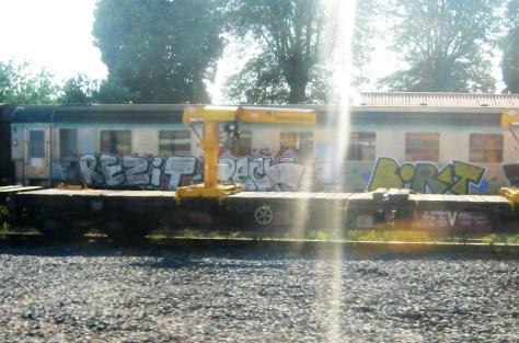 rezit-borat-graffiti-alsace-2013