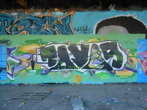 toyos graffiti - mai 2014 besancon (1)