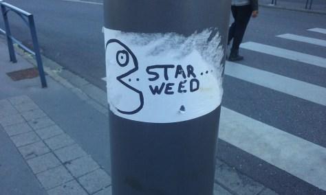 star weed - sticker - nancy juin 2015