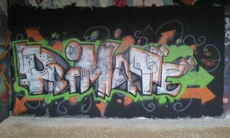 Primate_graffiti_besancon_2015