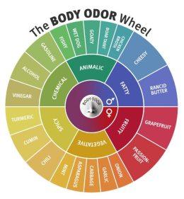 Body Odor Wheel
