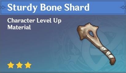 Sturdy Bone Shard