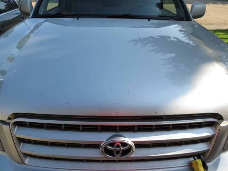 Road rash chipped paint on hood of a 2001 Toyota Highlander - Center closeup