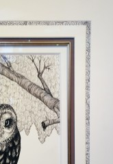 kendall owl detail