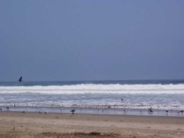 Pacific coast at Playa Sarcpampa in Peru, South America