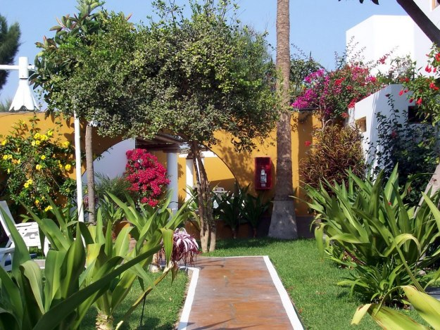 gardens at hotel paracus, peru