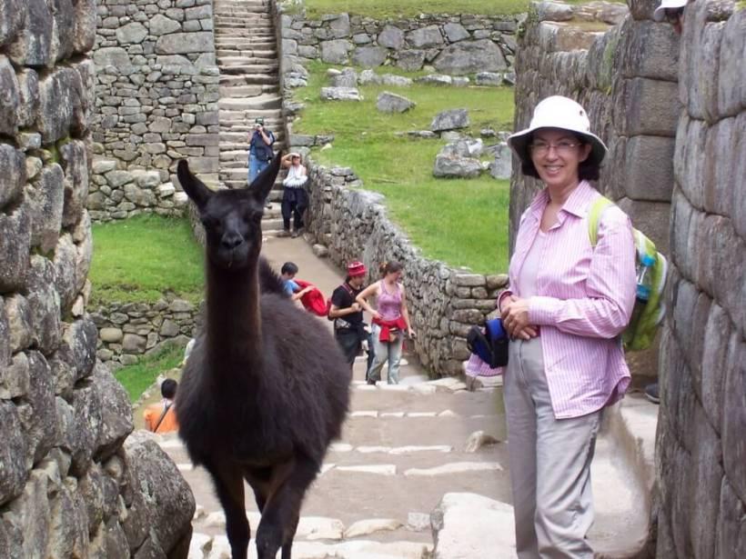 An image of Jean standing beside a Llama at Machu Picchu at Urubamba Province, Peru.