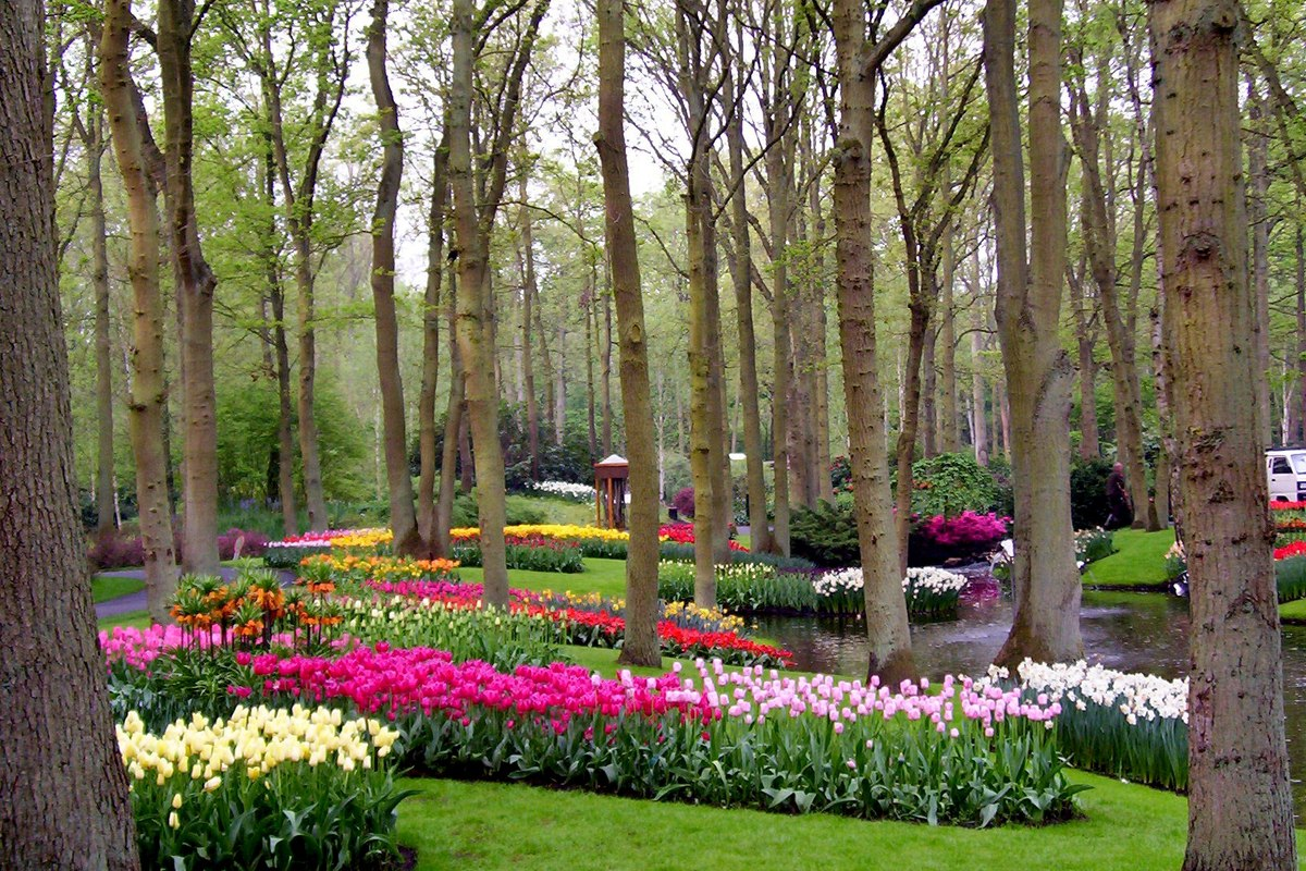 Keukenhof gardens our visit to holland 39 s world of tulips - What time does victoria gardens close ...