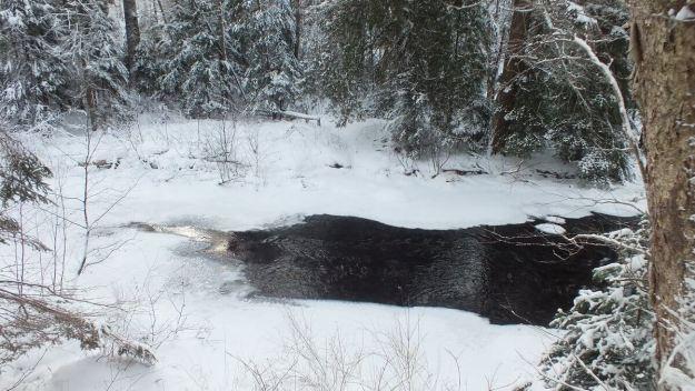 Gateway Creek - Fen Lake Ski Trail - Algonquin Park - Ontario