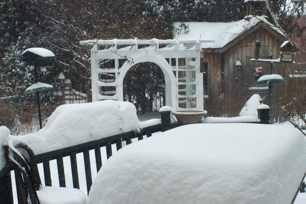 A snowy backyard in Toronto - Canada