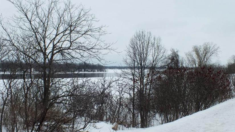 Frozen Ottawa River through trees along shoreline - Canada