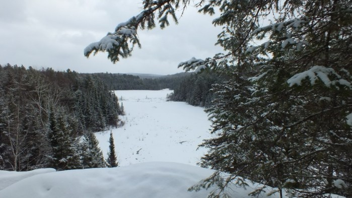 Beaver Pond from the trail lookout on the Beaver Pond Trail in Algonquin Provincial Park