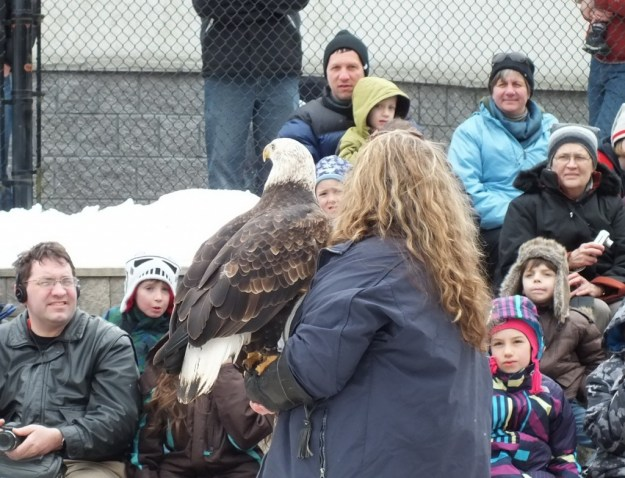 Mountsberg Raptor Centre - people