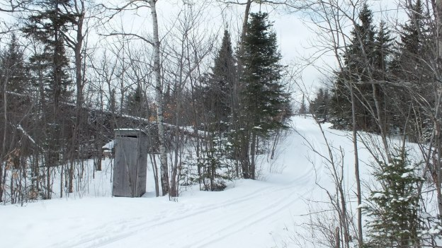Photo of Pinetree Loop ski trail in Algonquin Park