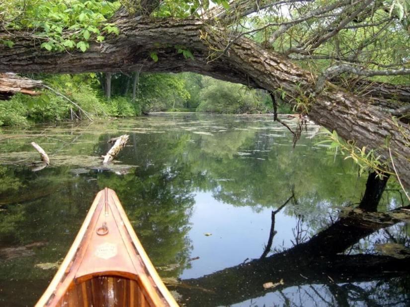 Canoeing on the Otonabee River - Ontario
