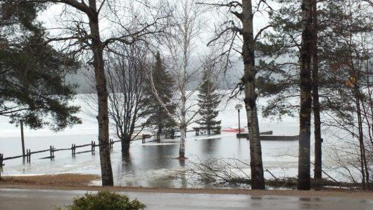 Oxtongue Lake flooding - flood land and fences into the lake - April 20 2013