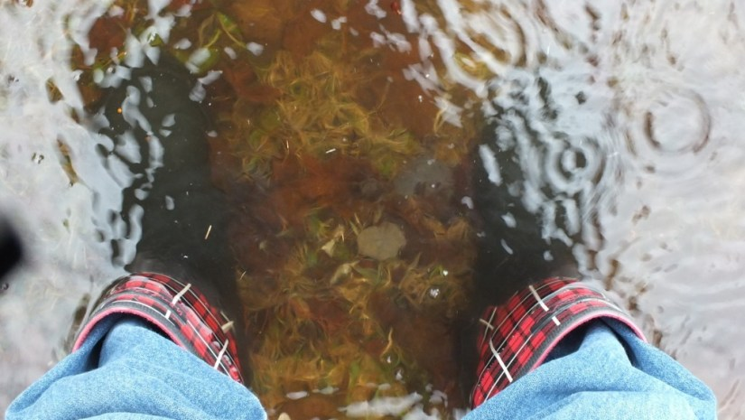Oxtongue Lake flooding - flood waters almost to top of my rubber boots - April 20 2013