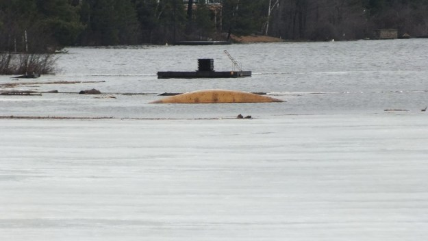 Oxtongue Lake flooding - sunken canoe and firewood adrift on lake - April 20 2013