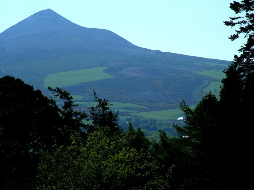 Sugar Loaf Mountain - fields - Powerscourt - Ireland
