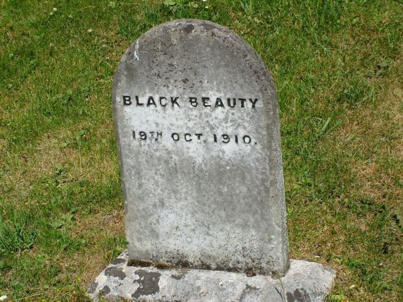 black beauty gravestone - powerscourt - wicklow - ireland