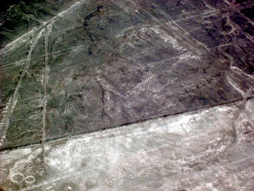 The Alcatras line drawing at the Nazca Lines of Peru, South America