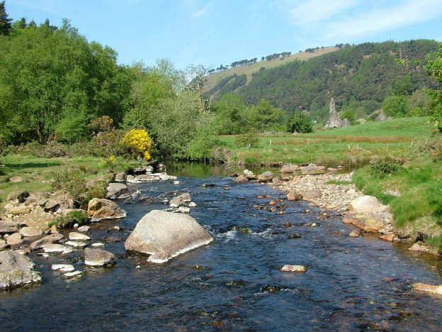 glendalough stream - wicklow mountains national park - ireland