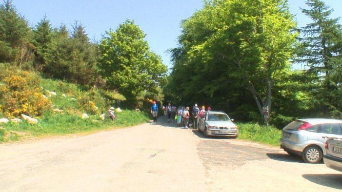 hikers near Lackandarragh Lower pathway - Wicklow - Ireland