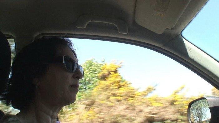 jean watches cars ahead - enniskerry - ireland