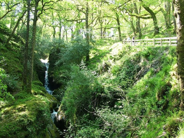 An image of the Poulanass Waterfall beside a hiking trail in Wicklow Mountains National Park, County Wicklow, Ireland.  Photography by Frame To Frame - Bob and Jean.