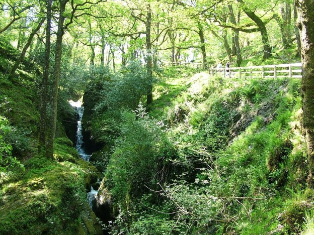 poulanass waterfall - wicklow mountains national park - ireland