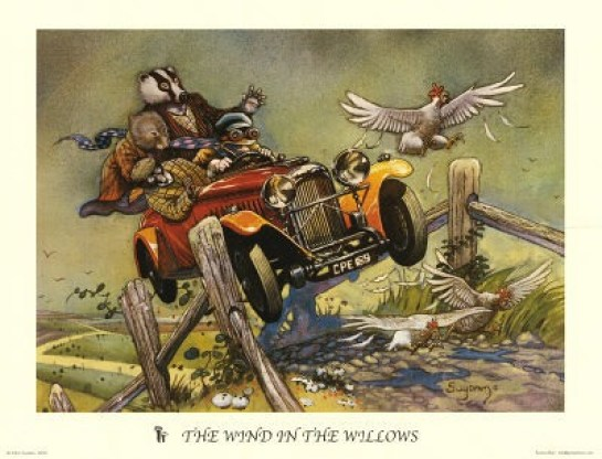 toad and motor car