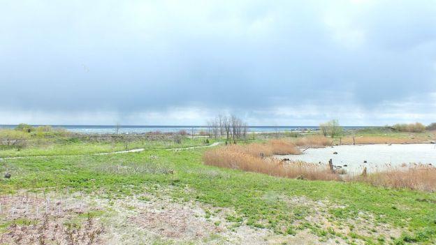 tommy thompson park - looking towards lake ontario - Toronto - Ontario