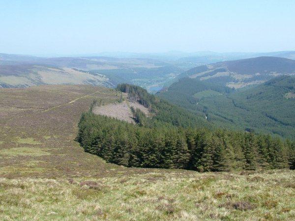 view of glendalough from prezen rock - wicklow mountains national park - ireland