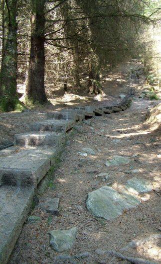 wooden walkway through forest - Poulanass trail - wicklow mountians national park - ireland