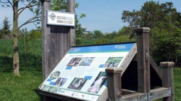 Bird Studies Canada - Second Marsh - Oshawa - Ontario