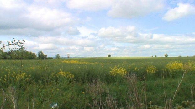 brownshill portal tomb - farm field - ireland
