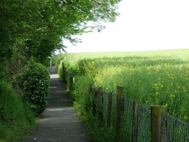 brownshill portal tomb - walkway alongside farm field - county carlow - ireland