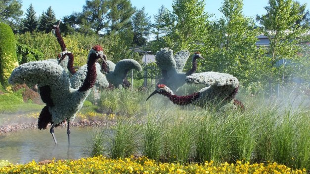 A True Story (birds in swamp) - Mosaiculture - Montreal Botancial Gardens