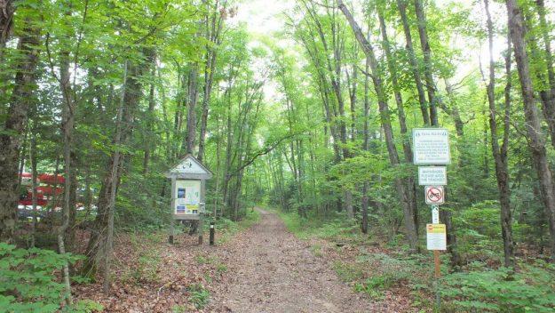 the beetle lake trail, oxtongue lake