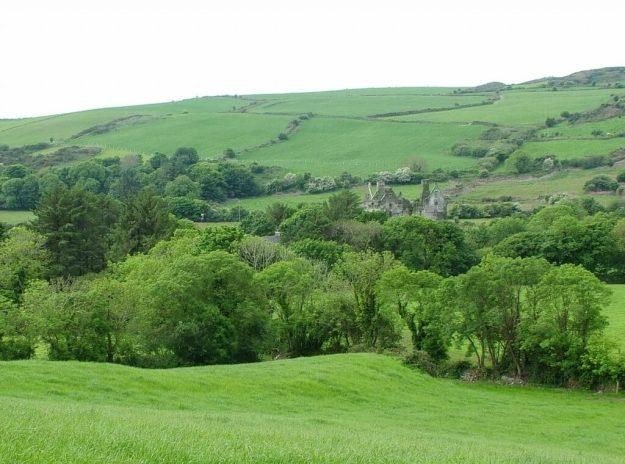 Coppinger's Court ruins, near Ballyvireen, county cork, Ireland