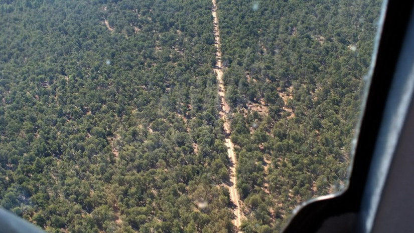 flight-over-kaibab-national-forest-52