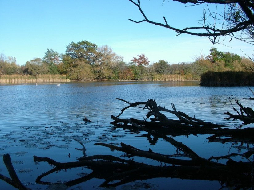 lynde shores conservation area, whitby, ontario