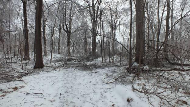 ice storm toronto 2013 - pic20