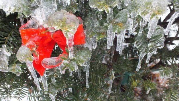 ice storm toronto 2013 - pic35