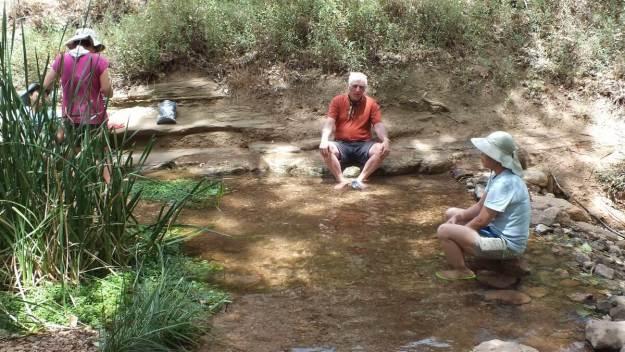 tiny pond at indian garden, grand canyon 25