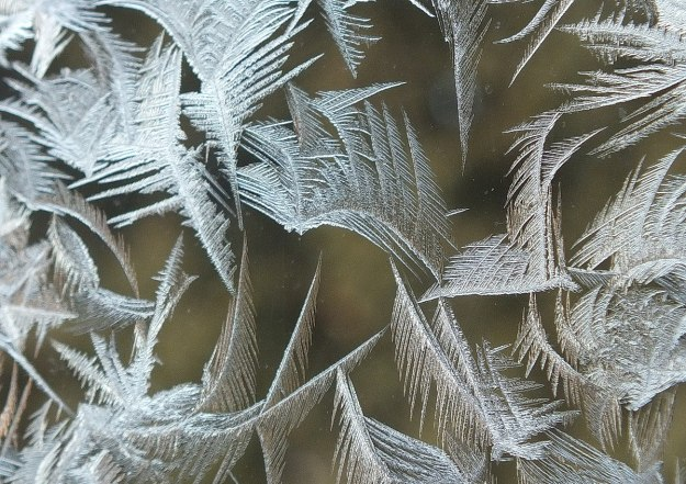 frost forms on a window pane - toronto 2
