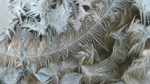 frost forms on a window pane - toronto 3