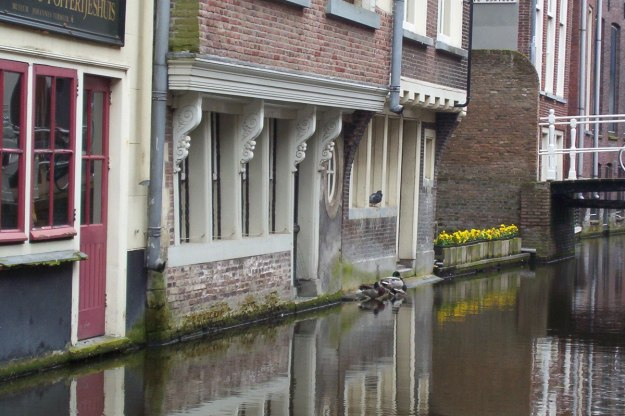 homes and ducks beside canal - delft - the netherlands