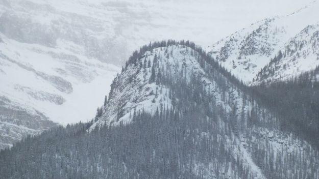 big beehive mountain - banff national park